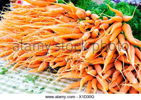 Farm fresh bunches of carrots, Duncan, British Columbia, Canada - Stock Photo