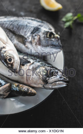 Close-up of raw sea bream, sea bass, sardines and mackerel fish on plate - Stock Photo