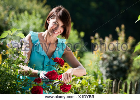 Germany, Bavaria, Woman pruning flowers in garden - Stock Photo