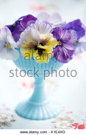 Flowers in turquoise bowl, close-up - Stock Photo