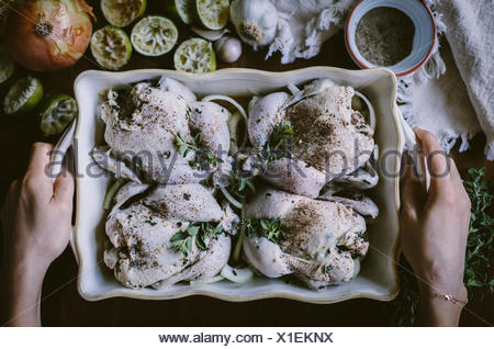 4 seasoned game hens are placed in a casserole pan are about to be placed in the oven. - Stock Photo