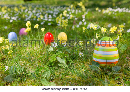 easter eggs, spring flowers in grass - Stock Photo