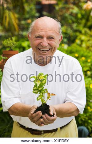 Senior man holding seedling in garden, (portrait) - Stock Photo