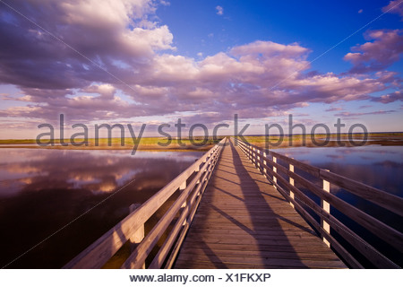 The Kellys beach boardwalk across the lagoon to the beaches and dunes on the Barrier Islands, Kouchibouguac National Park, New B - Stock Photo