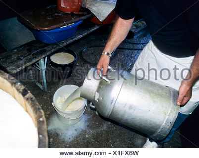 Dairy worker pouring milk from a milk jug into a plastic bucket - Stock Photo