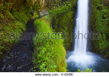 Hikers approach Tunnel Falls on the Eagle Creek Trail, cut into the basalt cliff behind the waterfall, in Columbia River Gorge National Scenic Area, Oregon. - Stock Photo