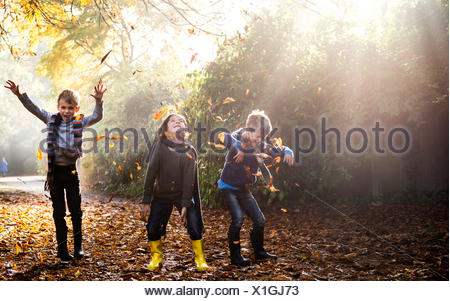 Three young boys, playing outdoors, throwing autumn leaves - Stock Photo