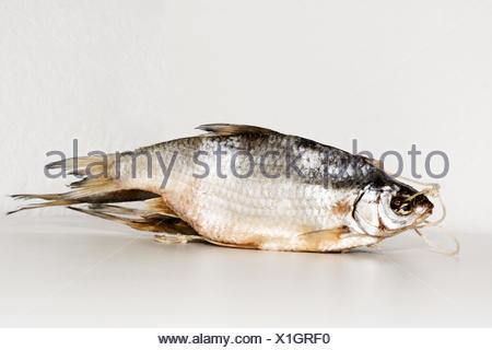 Dry fish isolated on white background - Stock Photo