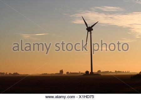 Wind turbine at dawn, Baltic island of Fehmarn, East Holstein, Schleswig-Holstein, Germany, europe - Stock Photo