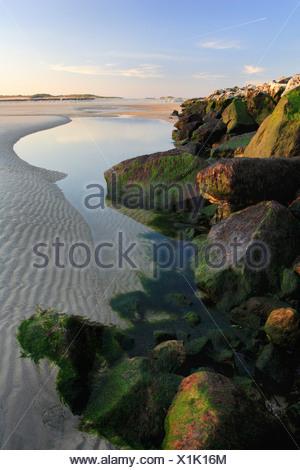 lake behind wave-breakers, Germany, Helgoland Duene - Stock Photo