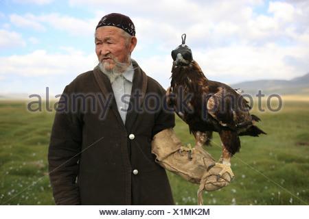 eagle hunter, bertutchy, Mongolia, Bayan Ulgii, Aimag, hunting, tradition, traditional, Kazakh, Western Mongolia, eagle - Stock Photo