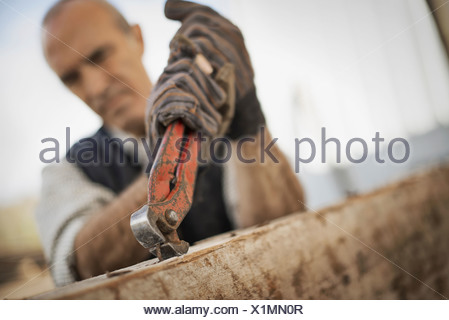 A man working in a reclaimed timber yard Using a tool to remove metals from a reclaimed piece of timber - Stock Photo