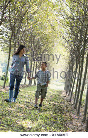 A woman and a young boy holding hands walking in woods. - Stock Photo