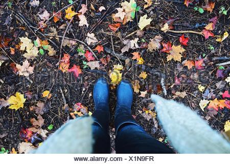 Low section of woman wearing wellington boots in the forest - Stock Photo