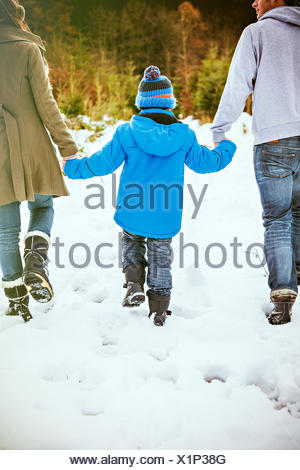 Parents and son searching for the perfect Christmas tree - Stock Photo