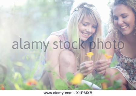 Two teenage girls picking wildflowers in woodland - Stock Photo