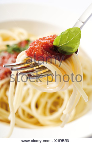 Spaghetti Bolognese on a fork - Stock Photo