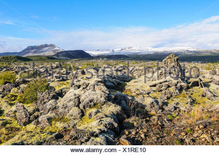 Field of lava covered with moss with the volcano Grabrok and the mountain Hraunsnefsöxl in the background. - Stock Photo
