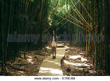 Girl standing on wooden boardwalk in bamboo forest, Hawaii, United States - Stock Photo