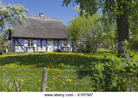 house on the island of usedom, germany - Stock Photo