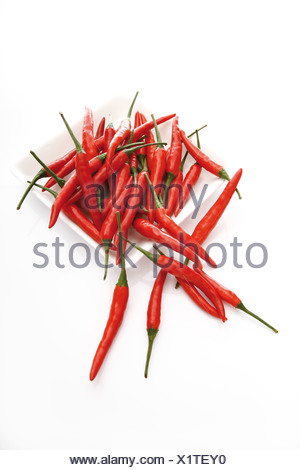Chili peppers on plate,  elevated view - Stock Photo
