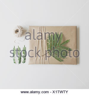 Parcel wrapped in brown paper and string decorated with fern leaf - Stock Photo