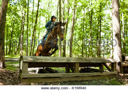 Horse rider jumping on horse - Stock Photo