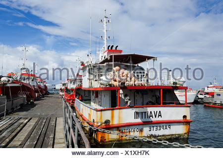 Ships in the fishing harbour, Papeete, Tahiti, Society Islands, French Polynesia, Pacific Ocean - Stock Photo
