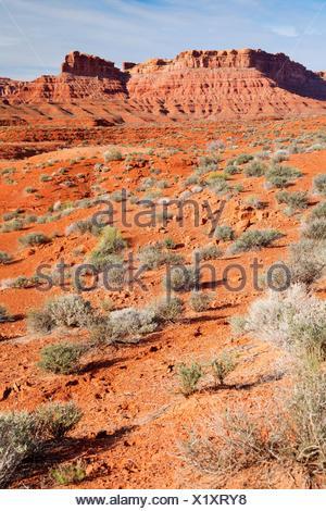 High desert, Valley of the Gods, Monticello Field Office Bureau of Land Management, Utah. - Stock Photo
