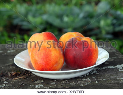 peaches on old wooden table - Stock Photo