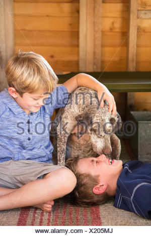 Two brothers playing with their dog. - Stock Photo