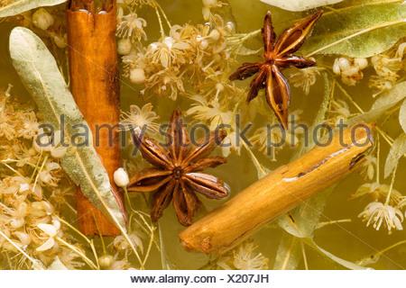 Lime blossom tea with cinnamon sticks and star anise - Stock Photo