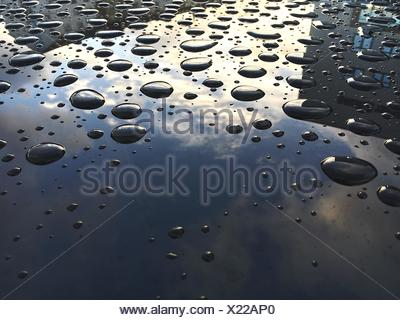 Close-Up Of Water Drops On Car Hood - Stock Photo