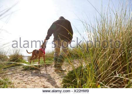 Man walking pet dog on sand dunes, Constantine Bay, Cornwall, UK - Stock Photo