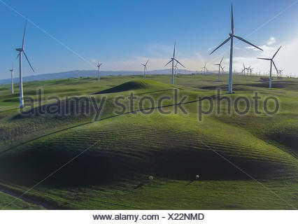 View of wind turbines on field - Stock Photo