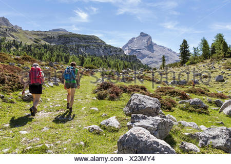 Italy, South Tyrol, Bolzano district, San Vigilio di Marebbe, Hikers in Fanes valley with Mount Piz Taibun in the background - Stock Photo