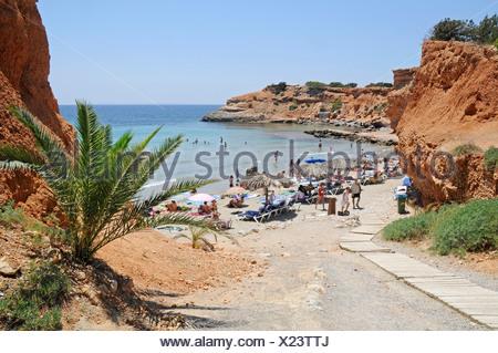 Cliffs, palm trees and bay, Sa Caleta, beach, Ibiza, Pityuses, Balearic Islands, Spain, Europe - Stock Photo