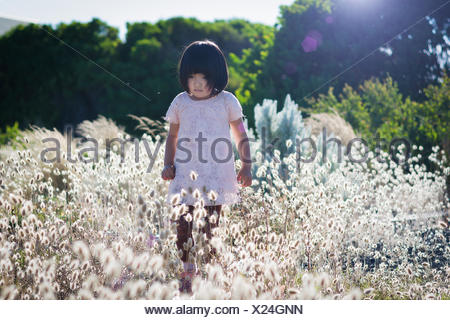 Small girl wearing white dress walking in field with high blossoming grass, trees in background - Stock Photo