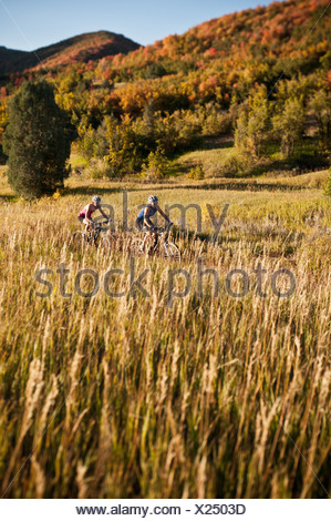 Mountain bikers in field - Stock Photo