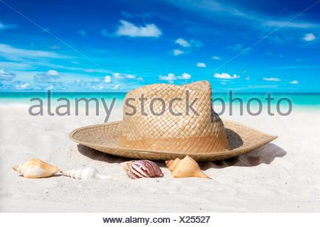 Strohhut und Muscheln am Sandstrand - Stock Photo