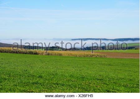 Nebel in den Tälern und Felder im Sonnenschein - Stock Photo