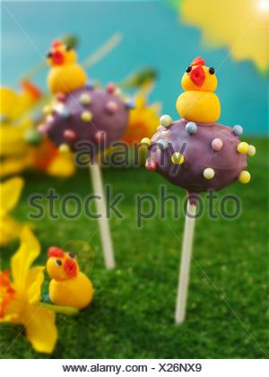 Cake pops decorated with marzipan chicks for Easter - Stock Photo
