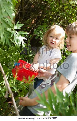Children picking fruits in garden - Stock Photo
