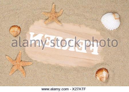 Strand Sand Szene in den Ferien im Sommer mit Seestern und Muscheln - Stock Photo