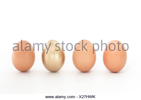 Four eggs in a row with one gold one - Stock Photo
