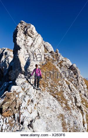 Climber on Bepi Zac climbing route in San Pellegrino Valley above the San Pellegrino Pass, Dolomites, Trentino, Italy, Europe - Stock Photo