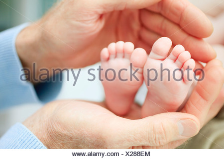 Close up of baby's feet in grandfather's hands - Stock Photo
