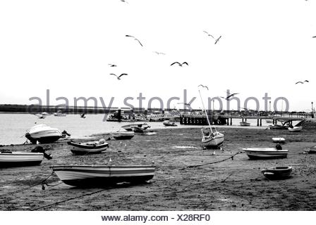 Boats On Beach During Low Tide - Stock Photo