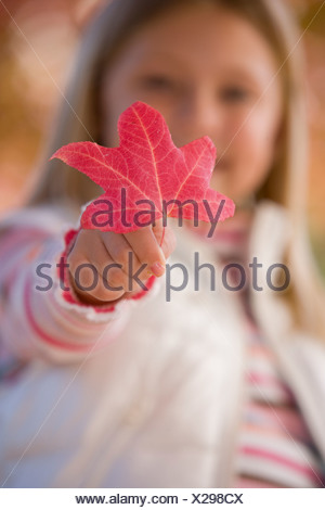 Close up of young girl holding autumn leaf - Stock Photo