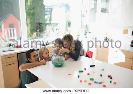 Young family feeding goldfish in bowl on kitchen counter - Stock Photo